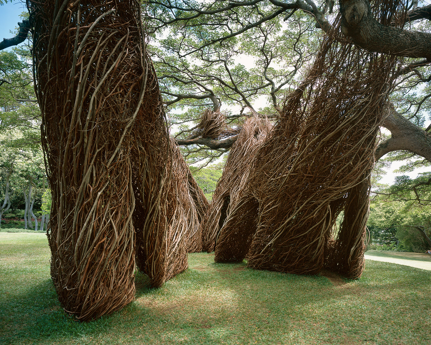 08. Na Hale 'Eo Waiawi (2003), Contemporary Art Museum, Honolulu, HI.