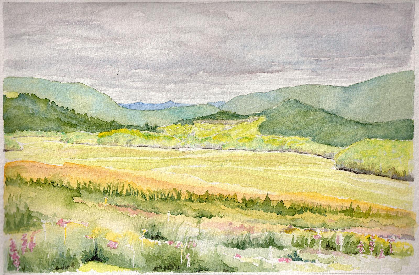 01. Grasslands View