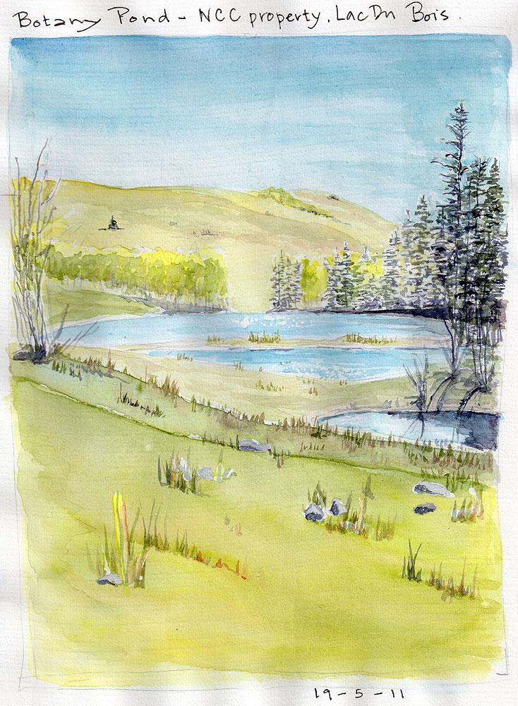 03. Botany Pond