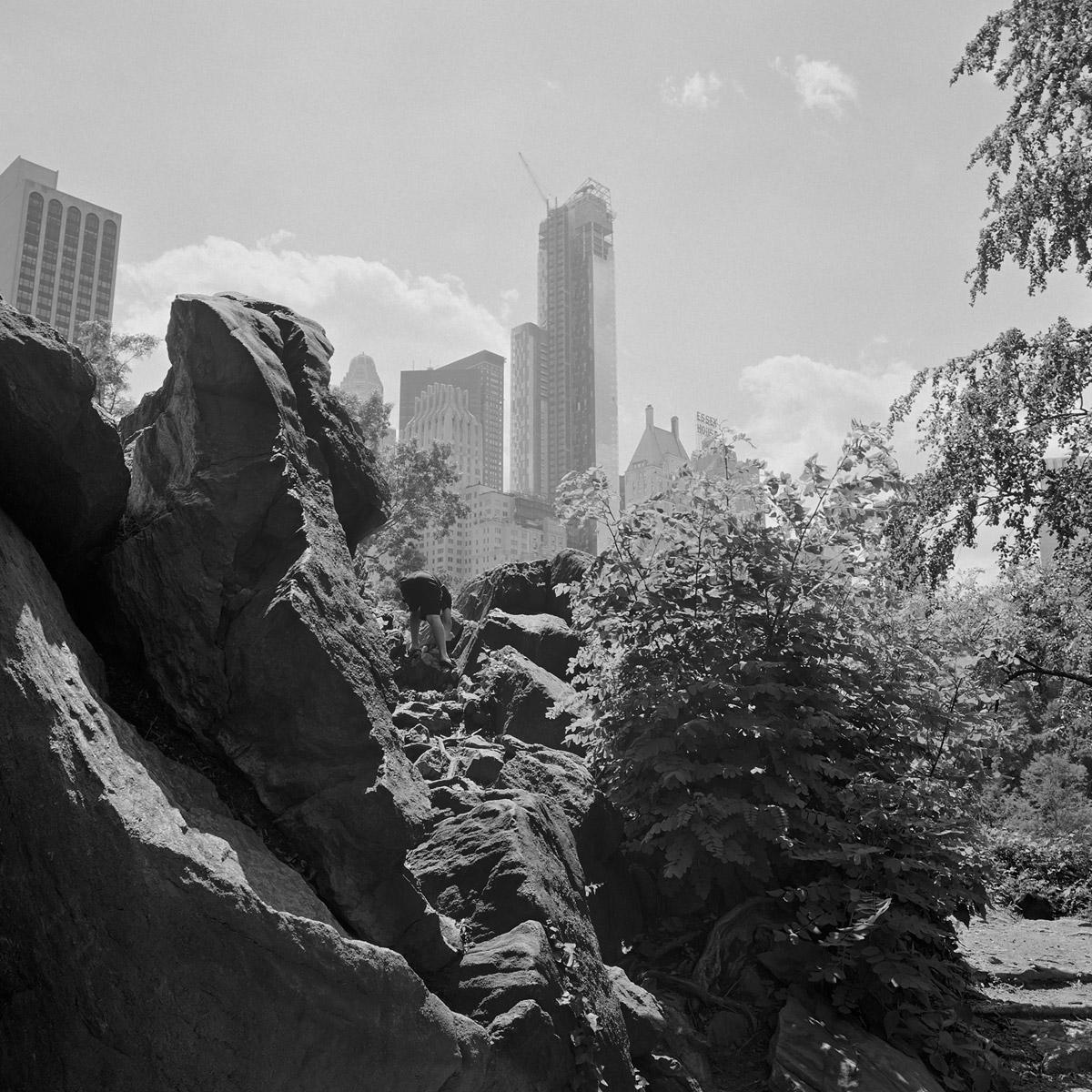 The Park 15 (2013)