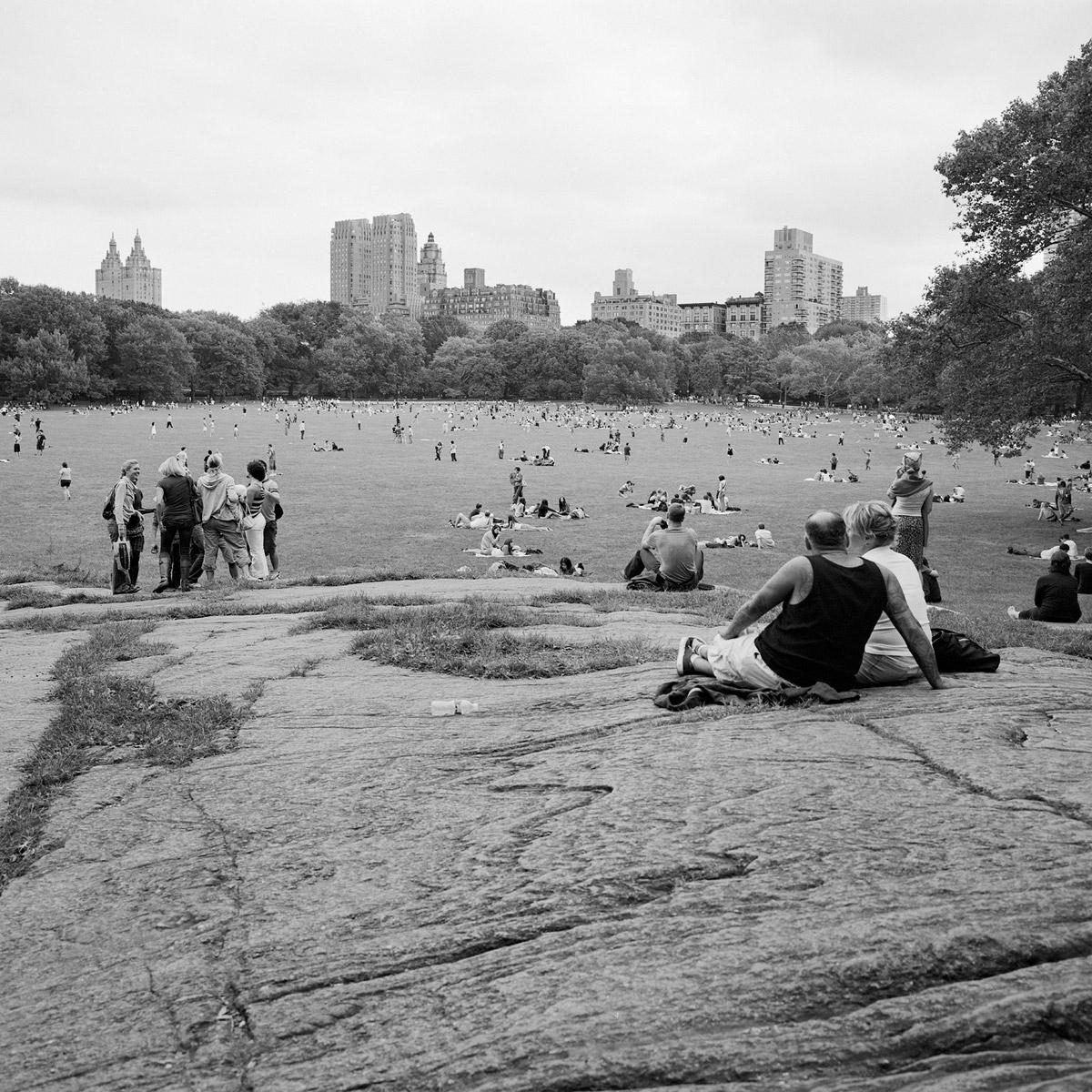 The Park 50 (2009)