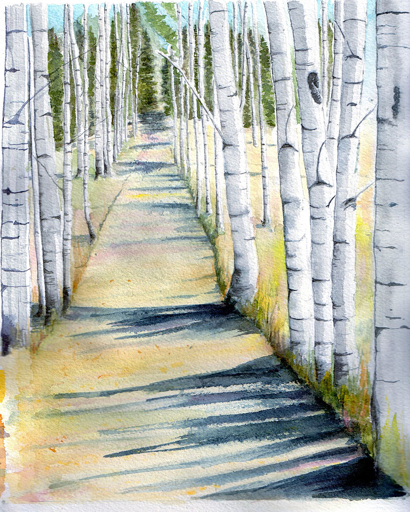 18. Old Road through Aspen Grove