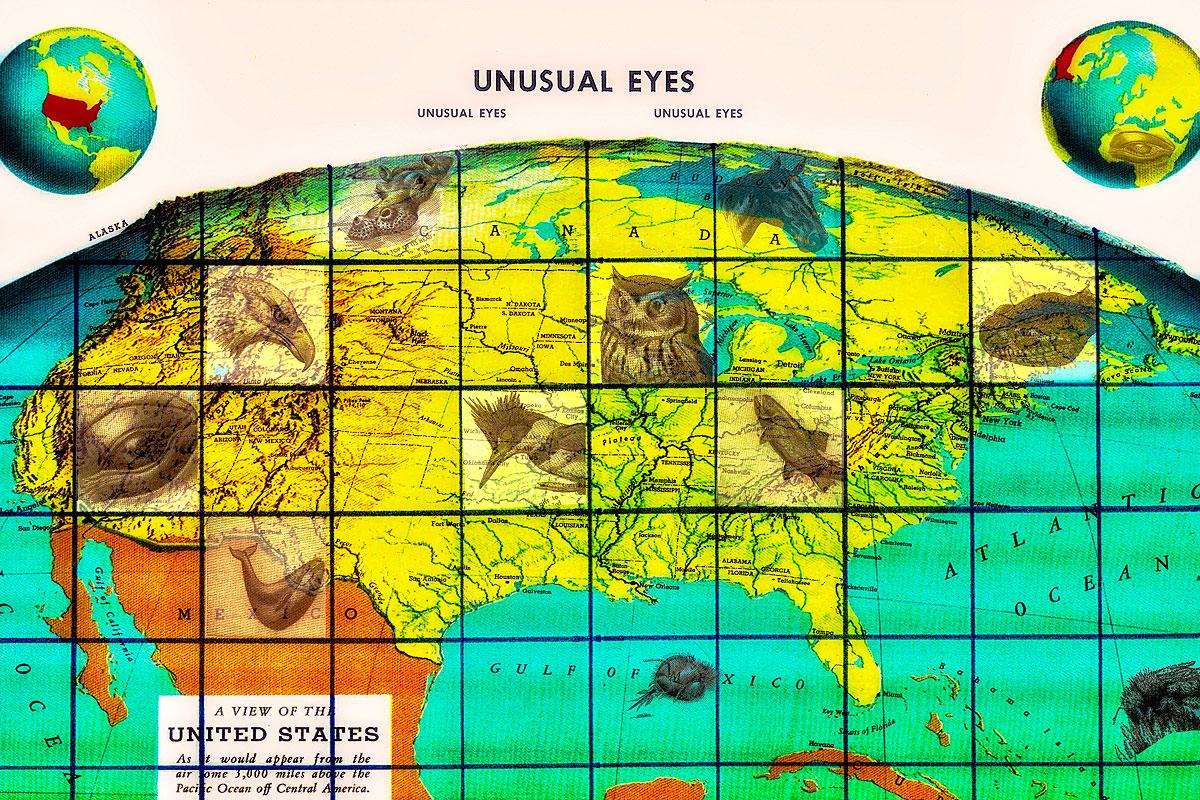 08. Unusual Eyes