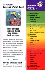 The Audubon Seafood Wallet Card - Click to view/download.