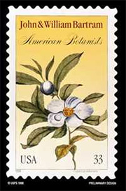 John & William Bartram American Botanists stamp, with Franlinia (USA 33).