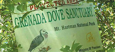 Grenada Dove Sanctuary sign.