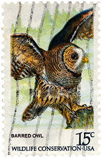 Barred Owl Wildife Conservation Stamp