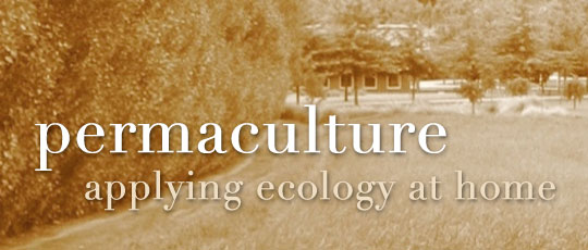 Permaculture: Applying Ecology at Home