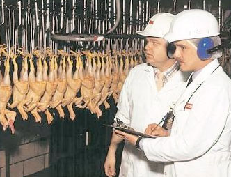 USDA food inspectors in chicken production facility