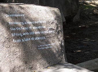 """""""Dreambabwe"""" by Les Murray on stone"""