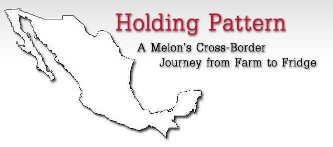 Holding Pattern: A Melon's Cross-Border Journey from Farm to Fridge