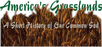 America's Grasslands:  A Short History of Our Common Sod by John Perry