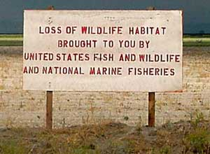"""Loss of Wildlife Habitat Brought to You by United States Fish and Wildlife and National Marine Fisheries."""