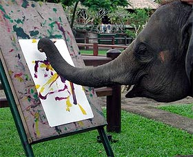 image, Ramona the elephant artist.