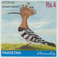 Hoopoe of Pakistan (stamp).