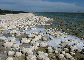 Thrombolites at Lake Clifton, low water, February
