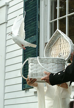 Dove flying out of heart-shaped basket at wedding