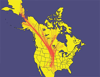 North American Central Fyway noting Sandhill crane migration routes.