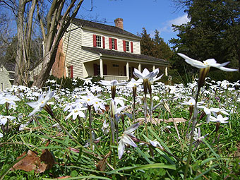 Walnut Grove Plantation manor house in spring