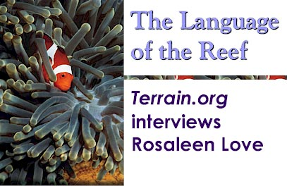 The Language of the Reef : Terrain.org interviews Rosaleen Love.