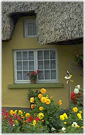 Cottage and flowers in Ireland.