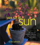 Yard Full of Sun, by Scott Calhoun.