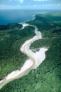 Aerial of sandy river through jungle to sea.