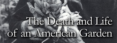 The Death and Life of an American Garden