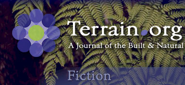 Terrain.org Fiction.