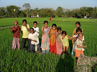 Children playing in rice paddy.