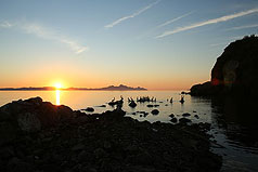 Pelicans and Loreto Bay at sunrise. Photo by Simmons Buntin.