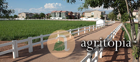 Agritopia in Gilbert, Arizona