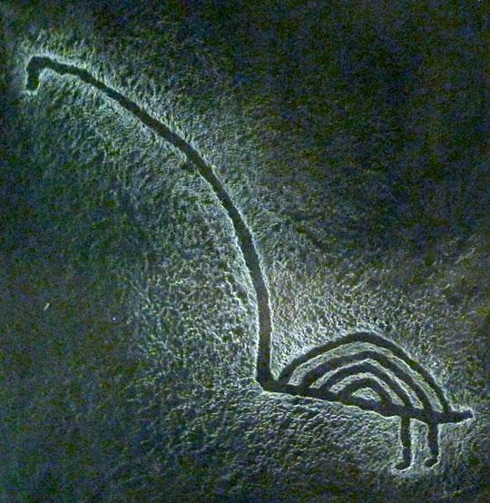 Karelian rock art: swan