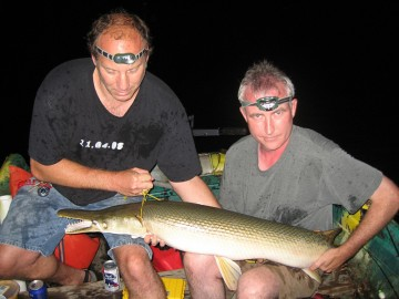 Hollywood and Minnow Bucket wrangle a gar