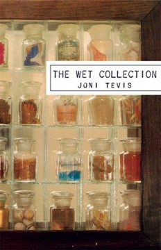 The Wet Collection, by Joni Tevis