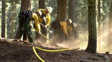 Fire crew members dig handline
