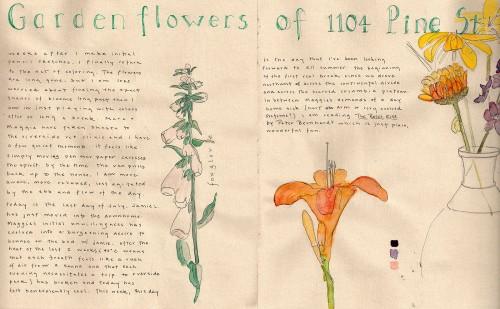 16garden_flowers