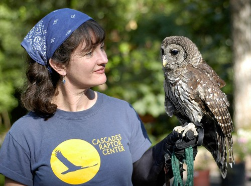 Melissa Hart and owl