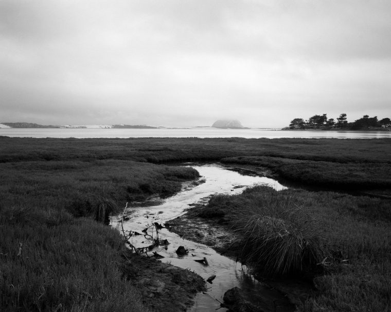 Morro Bay State Marine Recreational Management Area