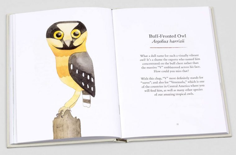 Page spread view of Owls: Our Most Charming Bird, by Matt Sewell