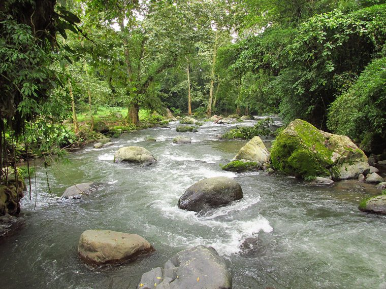 The Jalacingo River, at the site where it would be diverted for hydroelectric generation. Photo by Noah Silber-Coats.