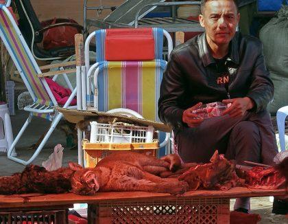 Mongla market vendor with animals.