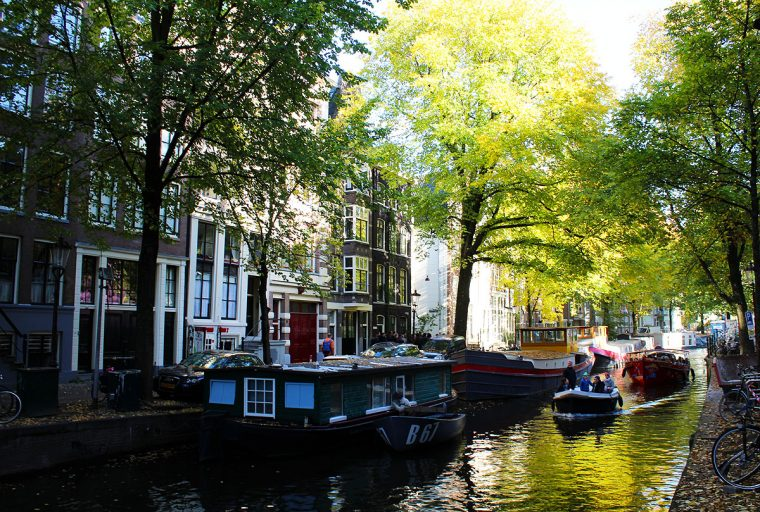 Amsterdam canal in the filtered light of trees.