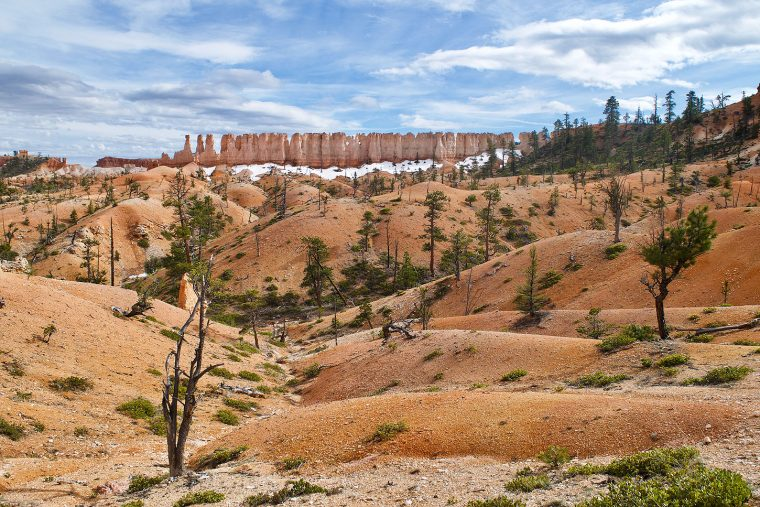 Bryce Canyon Epithalamium: Photo by Joel Long