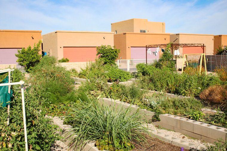 Civano community garden