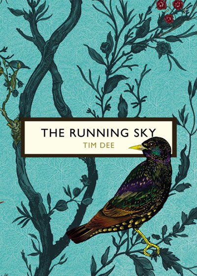 The Running Sky, by Tim Dee