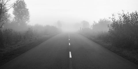 Rural road with fog