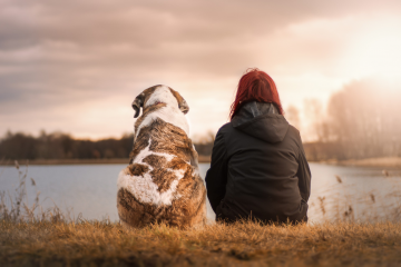 Isolated dog and girl staring across lake