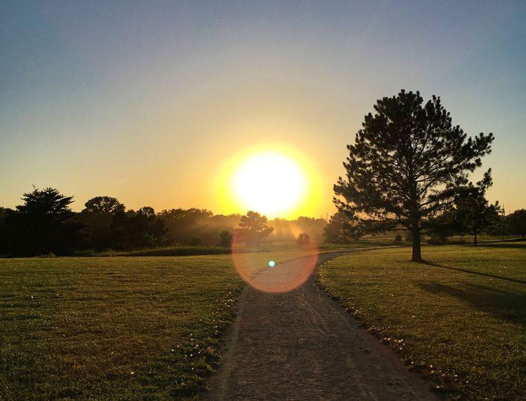 Sunset at the Botanic Gardens.  Photo by Gretchen VanWormer.